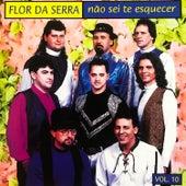 Não Sei Te Esquecer, Vol. 10 de Flor Da Serra