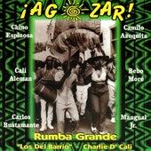 A Gozar Rumba Grande by Los Del Barrio