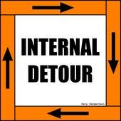 Internal Detour by Gary Sangervasi