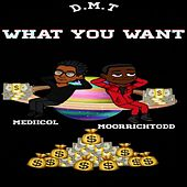 What U Want by DMT