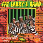 Act Like You Know - EP de Fat Larry's Band