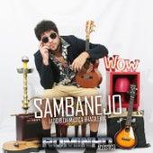 Sambanejo: Lado B da Música Brasileira (Acústico) by Rominho