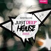 Just Deep-House, Vol. 1 de Various Artists