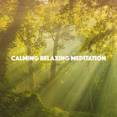 Calming Relaxing Meditation von Various Artists
