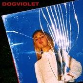 Dogviolet by Laurel