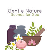 Gentle Nature Sounds for Spa de Zen Meditation and Natural White Noise and New Age Deep Massage