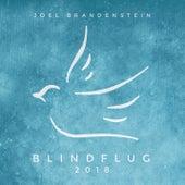 Blindflug 2018 von Joel Brandenstein