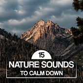15 Nature Sounds to Calm Down de Sounds Of Nature
