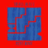 Heat Wave de Snail Mail