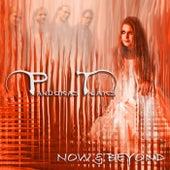 Now And Beyond von Pandora's Tears