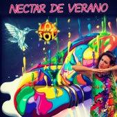 Nectar de Verano (V.a.) de Los del Sol