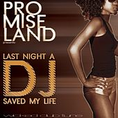 Last Night a Dj Saved My Life de Promise Land
