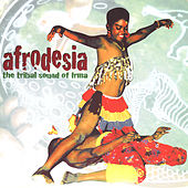 Afrodesia von Various Artists