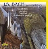 Bach from Salisbury by David Halls