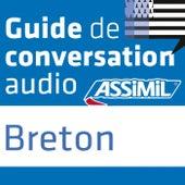 Guide de conversation Breton by Assimil