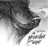 The Horseshoe Curve de Trey Anastasio