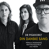 Din danske sang by Various Artists