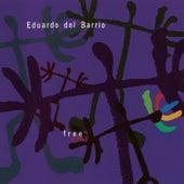 Free Play de Eduardo Del Barrio