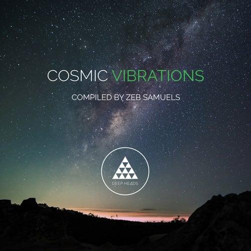 Cosmic Vibrations (Sampler 2) de Various Artists