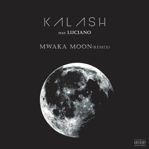 Mwaka Moon (Remix) de Kalash