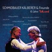 10 Jahre Tollwood (Live) de Schmidbauer