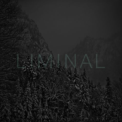 Liminal by Various Artists