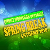 Spring Break Anthems 2018 de Various Artists