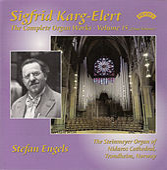 Karg-Elert: Complete Organ Works, Vol. 15 de Stefan Engels