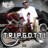 T.R.I.P.G.O.T.T.I. by Trip Gotti