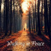 Walking in Peace by Nature Sounds (1)