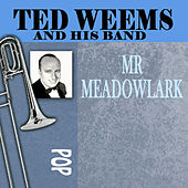 Mr. Meadowlark de Ted Weems