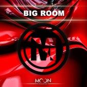 Moon Records Presents Big Room de Various Artists