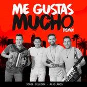 Me Gustas Mucho Remix (feat. Alkilados) von Jorge Celedón