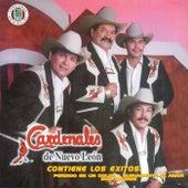 Fortaleza Esta Contigo [Disa] by Cardenales De Nuevo León