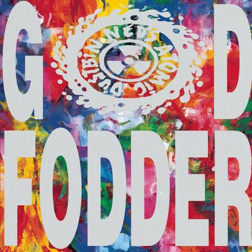 God Fodder by Ned's Atomic Dustbin
