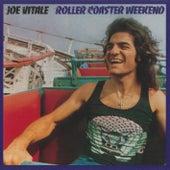 Roller Coaster Weekend by Joe Vitale