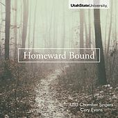 Homeward Bound de Various Artists