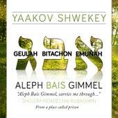 Aleph Bais Gimmel di Yaakov Shwekey