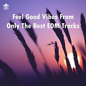 Feel Good Vibes From Only The Best EDM Tracks by Various Artists