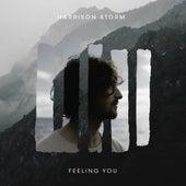 Feeling You de Harrison Storm