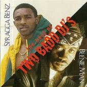 The Best of Two Bad DJ's de Various Artists