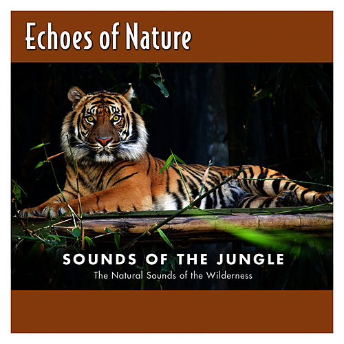 Sounds Of The Jungle by Echoes of Nature