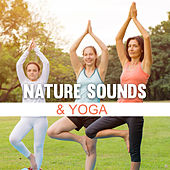 Nature Sounds & Yoga by Nature Sounds (1)