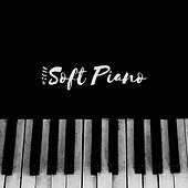 2018 Soft Piano de Piano Dreamers