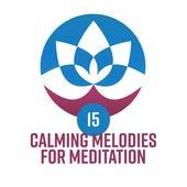 15 Calming Melodies for Meditation de Deep Sleep Meditation