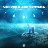 The Calling Remixes de Vini Vici