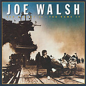 You Bought It: You Name It by Joe Walsh