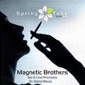 Sex & Love Processes on Digital Waves fra Magnetic Brothers