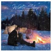 Winter Sleep (Type B) de JUNHO (From 2PM)