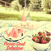 Picnic Soul Selection by Various Artists